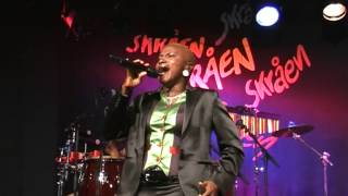 Angelique Kidjo - Djin Djin (2008) version 2