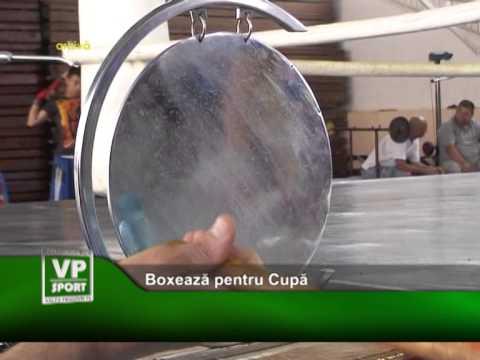 Boxeaza pentru Cupa