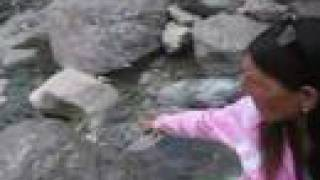 preview picture of video 'Merlo San Luis - Pasos Malos - febrero 2008 Video 1'