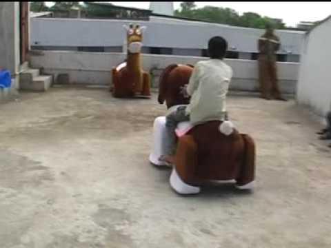 Brown Horse Walking Animal Ride