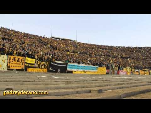 """""""""""Soy hincha del carbonero y no me importa nada"""""""" Barra: Barra Amsterdam • Club: Peñarol"""