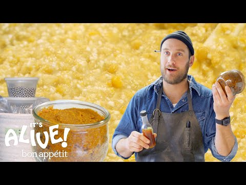 Download Brad Makes Miso Paste | It's Alive | Bon Appétit HD Mp4 3GP Video and MP3