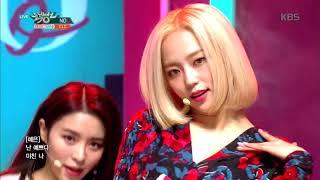 뮤직뱅크 Music Bank - NO - CLC.20190201