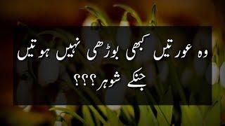 Urdu Quotes About Husband Wife  Relation | Mian Biwi Ka Rishta | Biwi Ke Huqooq | Shohar Ke Huqooq