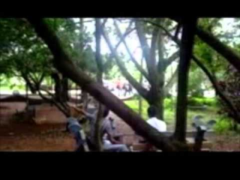 A video of my college..... With my friends.... Abhishek,Anoop,Aruna,Ashif,Binulash,Deepthy,Dileep,Edwin,Gopakumar, Haneesh,Jishnu Dev,Justin,Kavitha,Lishoy,Mumdhas,Nithu,Sairaj,Sajith, Sandheep,Sanu,Sarath S,Sarath Sasi,Shifana,Shyni,Sojan,Sreedevan,Uma,