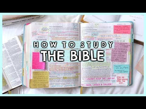 How I Study My Bible (Beginner Tips For Bible Study)