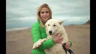 RESCUED WOLFDOGS - Wolfdog Rescue UK