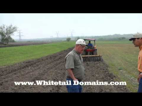 Food Plots the Right Way