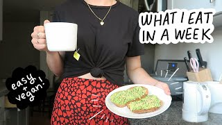 What I Eat in a Week (while working 9-5)