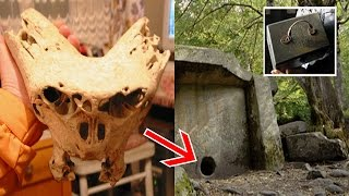 Top 15 Scariest Things Found In The Woods