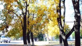 Осенняя Кодыма