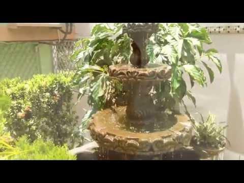 Imagen de Hotel Posada De Paz Managua cerca de aeropuerto y de mercado mayoreo