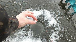 Зимние аттрактанты на окуня