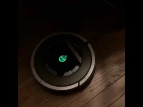 Who Needs a Maid When You've Got iRobot Roomba