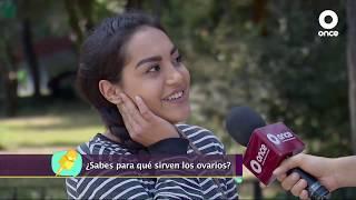 Diálogos en confianza (Salud) - Ovario poliquístico