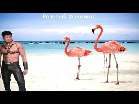 Алёна Свиридова - Розовый фламинго (Right Version♂)