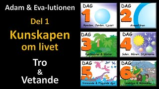 Thumbnail for video: Adam och Eva-lutionen Del 1: Kunskapen om livet (Tro & Vetande)