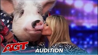 "Pigs Got Talent! Heidi Klum KISSES Talented Pig For ""Good Luck"""