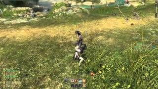 Blade & Soul 1st CBT -Kung-Fu Master Play video 3