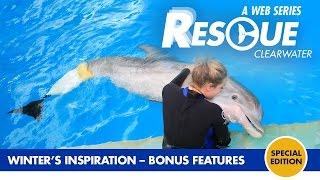 Winter's Inspiration - Rescue-Clearwater Season 1 Bonus Episode
