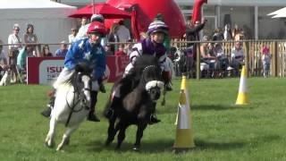 Shetland Pony Grand National