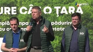 Klaus Iohannis: Este nevoie de mai multă pădure în România; avem probleme de mediu