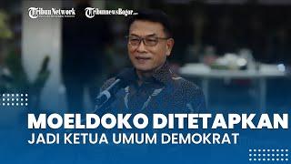 KLB Demokrat di Deliserdang Menetapkan Moeldoko sebagai Ketua Umum