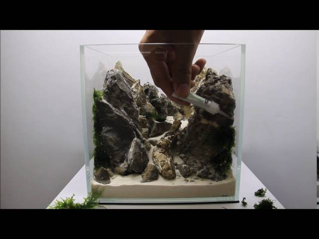 Aquascaping Aquadesigner Mountain Scape Realisation Nano Aquarium