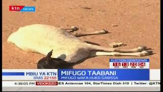 Rais Uhuru Kenyatta awashawishi wakaazi wa Pwani kumpigia kura: Mbiu ya KTN
