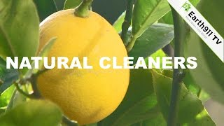 Homemade Cleaning Products With Earth911
