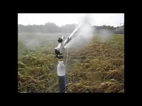 sistema de riego  por aspersion con bomba motor diesel