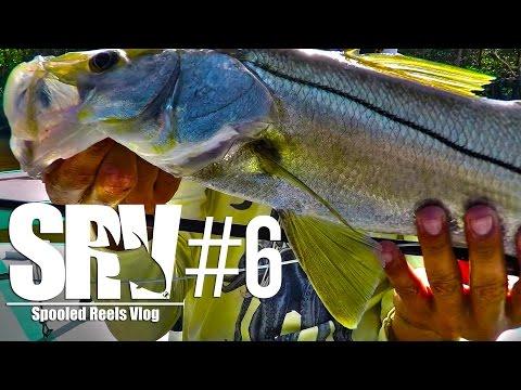 Fly Fishing for Everglades Snook - Spooled Reels Vlog - SRV #6