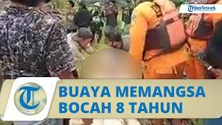 VIDEO Penampakan Mayat Bocah 8 Tahun Utuh di Dalam Perut Buaya, Warga Menangis Histeris