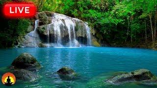 🔴 Relaxing Meditation Music 24/7, Relaxing Music, Sleep Music, Mediation Music, Study Music