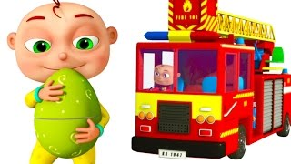 Five Little Babies Driving Transport Vehicles   Surprise Giant Eggs For Kids   Zool Babies