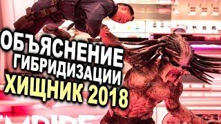ОБЪЯСНЕНИЕ ГИБРИДИЗАЦИИ    ХИЩНИК 2018