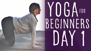 15 Minute Yoga For Beginners 30 Day Challenge Day 1 With Fightmaster Yoga by Fightmaster Yoga