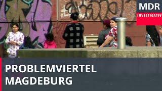 Rumänen sorgen für Ärger in Magdeburg | Exakt | MDR